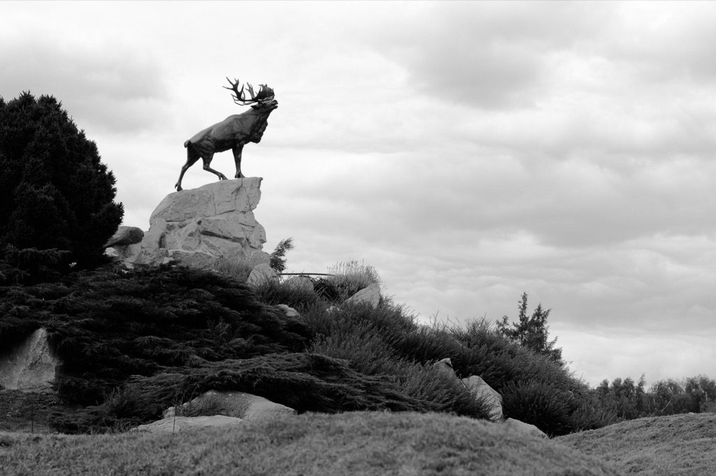 beaumont_hamel