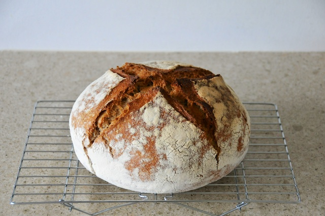 first_french_bread 001 (1)